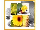 Fotoalbum DBLP-30 Art 2 žluté