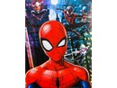 Fotoalbum MM-46100B Disney 06 Spiderman