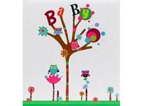 Fotoalbum 15 010 Baby owls