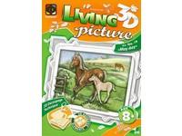 Sada kreativní Living pictures A4 koně
