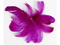 Pírka kreativní fialové 10g DP
