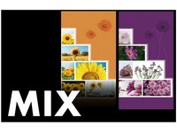Fotoalbum P2-3596 Alfresco mix