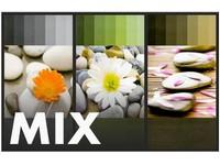 Fotoalbum P2-3596 Essence mix