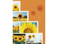 Fotoalbum MM-46100 Calyx 1 žluté