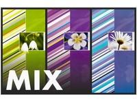 Fotoalbum P2-4696 Line mix