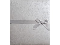 Fotoalbum DBCL-50W(B) Silk 2 stříbrné PL