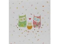 Fotoalbum 15 163 Owlfamily