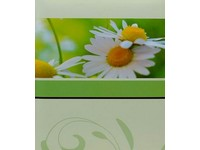 Fotoalbum 98.225.00 Blossoms 1 zelené