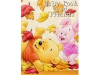 Fotoalbum MM-46100B Disney H 10 baby oranžové