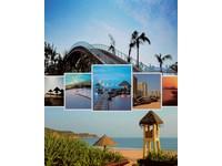 Fotoalbum MM-46200 Paradise 4 palmy