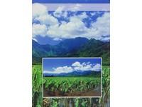 Fotoalbum B-35200 Focus 3 listy