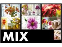 Fotoalbum P2-5736 Welfare mix