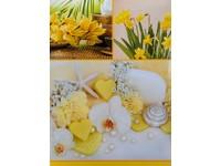 Fotoalbum B-46300/2S Aloe 2 žluté PL
