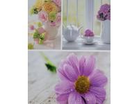 Fotoalbum MM-46200 Welfare 1 fialové