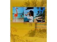 Fotoalbum 98.270.10 Earth žluté