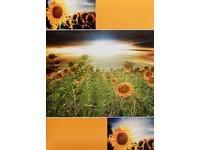 Fotoalbum B-46200S Vista 2 žluté PL