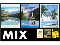 Fotoalbum P2-4624 Assort mix PL