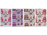 Zápisník A5 Owl mix