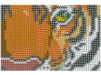 Mozaika diamantová B 02 tygr