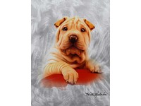 Fotoalbum DRS-20B Doggy 3 béžový pes