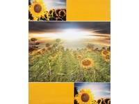 Fotoalbum DPH-46304/2 Vista 2 žluté PL