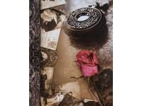 Fotoalbum MM-46304/2 Time3 1 růžová růže pohlednice PL