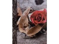 Fotoalbum MM-46304/2 Time3 2 červená růže listy PL