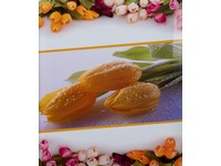 Fotoalbum B-46500S Flower love 1 tulipán PL